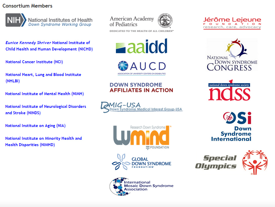 The Down syndrome Consortium members