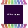 Ethans Law