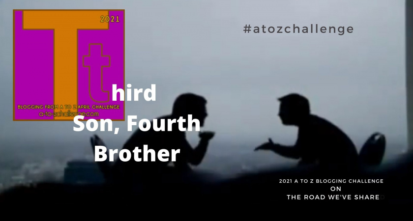 A to Z Blogging Challenge – Down Syndrome in the Media – Third Son, Fourth Brother
